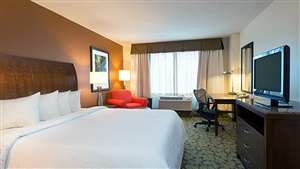 Hilton Garden Inn Orlando King Bed