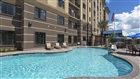 Staybridge Suites Orlando at SeaWorld Pool